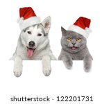 Stock photo dog and cat in santa red hats looking at you on a white banner 122201731