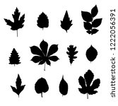 leaves silhouettes set isolated ... | Shutterstock .eps vector #1222056391