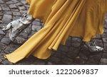 october 2  2018  paris  france  ... | Shutterstock . vector #1222069837