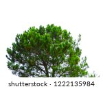 green tree colorfull  | Shutterstock . vector #1222135984