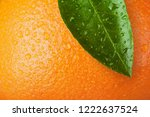 close up of orange wiht leaf... | Shutterstock . vector #1222637524
