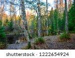 autumn forest river shore scene....   Shutterstock . vector #1222654924