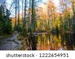 autumn forest river reflection...   Shutterstock . vector #1222654951