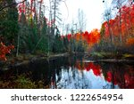 red autumn forest river...   Shutterstock . vector #1222654954