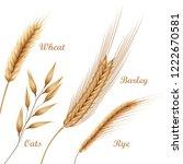 vector realistic illustration... | Shutterstock .eps vector #1222670581