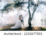 bride and groom on the... | Shutterstock . vector #1222677301