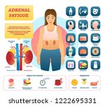 adrenal fatigue vector... | Shutterstock .eps vector #1222695331