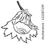 hazelnuts in cupule on a branch | Shutterstock .eps vector #122287159