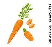vector illustration of natural... | Shutterstock .eps vector #1222920661