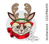 Vector Cat With Christmas Horns ...
