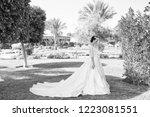 wife in perfect wedding dress....   Shutterstock . vector #1223081551