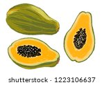 illustration of natural and... | Shutterstock .eps vector #1223106637
