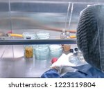 blurred of scientist doing the... | Shutterstock . vector #1223119804