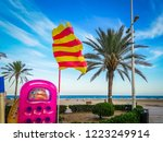 a beautiful photo of a palm... | Shutterstock . vector #1223249914