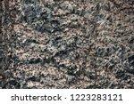 bird colony on basalt rocks  ... | Shutterstock . vector #1223283121