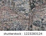 bird colony on basalt rocks  ... | Shutterstock . vector #1223283124