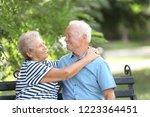 elderly couple resting on bench ...   Shutterstock . vector #1223364451