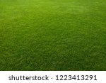 green grass background | Shutterstock . vector #1223413291