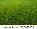 green grass background | Shutterstock . vector #1223413291