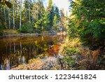 autumn forest river landscape.... | Shutterstock . vector #1223441824
