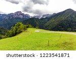 alpine landscape green meadow... | Shutterstock . vector #1223541871