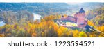 amazing aerial view panorama... | Shutterstock . vector #1223594521