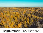 aerial view over forest at... | Shutterstock . vector #1223594764