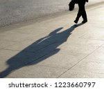silhouette of person walking... | Shutterstock . vector #1223660797