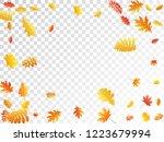 oak  maple  wild ash rowan... | Shutterstock .eps vector #1223679994