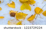 the first snow  late autumn ... | Shutterstock . vector #1223729224