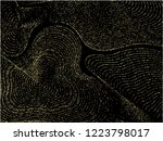 curve lines of multiple circle... | Shutterstock .eps vector #1223798017