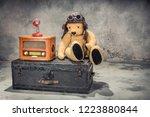 retro radio  red microphone ... | Shutterstock . vector #1223880844