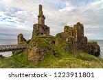 Castle Sinclair Girnigoe From...