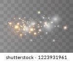 white sparks glitter special... | Shutterstock .eps vector #1223931961