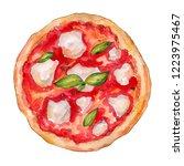 watercolor pizza neapolitan... | Shutterstock . vector #1223975467