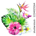 beautiful tropical palm leaves... | Shutterstock . vector #1224025264
