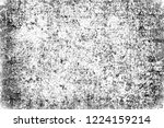 the grunge texture black and... | Shutterstock . vector #1224159214