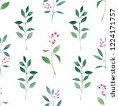 green leaf on white background  ... | Shutterstock . vector #1224171757