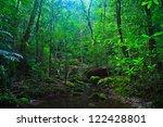 tropical rainforest landscape ... | Shutterstock . vector #122428801