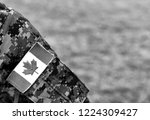 canadian troops. canadian army. ...   Shutterstock . vector #1224309427