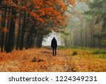 foggy forest. girl in the... | Shutterstock . vector #1224349231