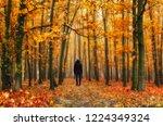 foggy forest. girl in the...   Shutterstock . vector #1224349324