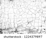 grunge with crack | Shutterstock . vector #1224379897