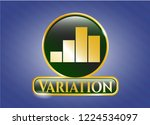gold badge with chart icon and ... | Shutterstock .eps vector #1224534097