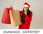 young woman ready for christmas ... | Shutterstock . vector #1224537037