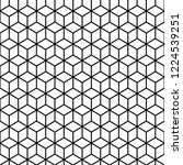 cubes black and white seamless... | Shutterstock . vector #1224539251