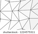 asymmetrical texture with... | Shutterstock .eps vector #1224575311