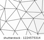 asymmetrical texture with... | Shutterstock .eps vector #1224575314