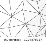 asymmetrical texture with... | Shutterstock .eps vector #1224575317