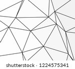 asymmetrical texture with... | Shutterstock .eps vector #1224575341